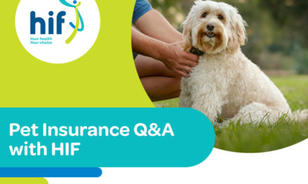 What you need to know about Pet Insurance with HIF