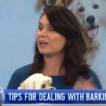Tips for dealing with barking dogs